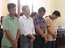 Xét xử lại vụ lừa đảo ở công ty thủy sản An Khang