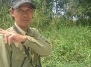 Theo dấu mãng xà U Minh Hạ - Bài 1: Khát khao diện kiến 'thần rừng'