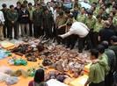 Phạt 15 tỉ đồng khi buôn bán động hoang dã vào Việt Nam