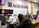 Làm việc về công tác thi hành án tín dụng, ngân hàng