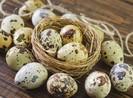 5 lợi ích tuyệt vời của trứng cút