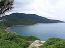 TTCP làm việc về các dự án ở bán đảo Sơn Trà