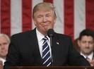Vượt mặt Quốc hội đánh Syria, ông Trump có vi hiến?