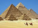 Saigontourist thông báo 8 du khách từ Ai Cập về Việt Nam