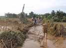 Quảng Ngãi: Phân bổ 1000 tấn gạo cứu đói cho dân