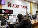 Agribank quyết tâm cùng ngành ngân hàng xử lý nợ xấu