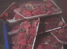 Clip: Phát hiện hàng tấn thịt heo trộn thịt đà điểu