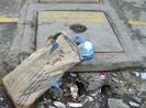 Đã cấm vẫn bỏ rác bừa