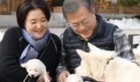 Tổng thống Hàn Quốc khoe 'quốc khuyển' ông Kim tặng sinh 6 con