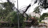 Bão vào Vũng Tàu, mưa to hoành hành khắp miền Nam