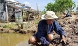 Ác mộng hà bá ở cồn Phú Đa, Bến Tre