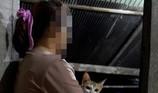 Những cô gái bị cưỡng hôn ở Trung Quốc