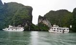 Bão số 4: Quảng Ninh cấm tàu nghỉ đêm xuất bến