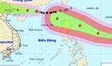 Quảng Ninh: Cấm tàu ra khơi từ 6 giờ sáng nay