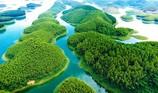 Tôn Hoa Sen giải thể dự án bất động sản ngàn tỉ