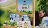 Đại gia Singapore 9 lần 'thất thủ' với bò sữa Vinamilk