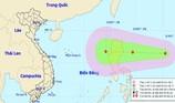 Họp khẩn chống lũ, áp thấp lại tiến vào biển Đông