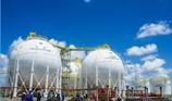 PV Gas dẫn đầu Top 50 công ty niêm yết tốt nhất Việt Nam
