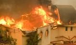 Dàn sao Hollywood ở Malibu kéo nhau bỏ chạy vì cháy rừng  