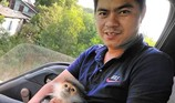 Voọc chà vá trèo vào cao tốc Đà Nẵng-Quảng Ngãi