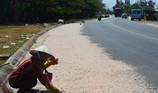 Trúng mùa ruốc, ngư dân Hồ Tràm thu tiền triệu mỗi ngày