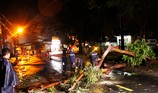 Cảnh sát PCCC xử lý hiện trường cây đổ kéo cột điện ở Thủ Đức