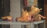 Rủi ro khi ăn phải thịt chó dại