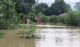 Bình Thuận: Thanh long ngập nước, 200 hộ dân bị chia cắt