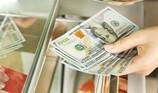 Có nên tịch thu tang vật là số tiền USD mang đi đổi?