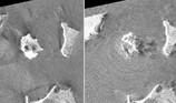 Ảnh chụp vệ tinh cho thấy đảo Indonesia trước và sau sóng thần