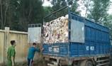 Bắt đoàn xe từ Bình Dương qua Đồng Nai đổ trộm chất thải