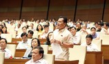 Quốc hội tranh luận về vụ xử BS Hoàng Công Lương