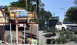 TP.HCM: Nắp hố ga thường xuyên bị mất