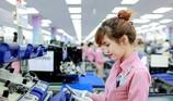 Công nghiệp hỗ trợ VN nhìn từ chuyện ông lớn Samsung
