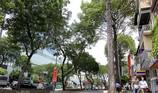 Cấm các loại xe lưu thông vào đường Lê Lợi