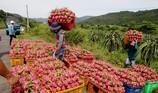 Trung Quốc mời 500 doanh nghiệp Việt tham dự hội chợ
