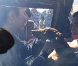 Rơi khỏi máy bay, chú chó sống sót trên hoang mạc 6 ngày