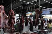 Bò Úc loạn giá