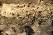 Phát hiện mồ chôn tập thể 380 bộ hài cốt từ thế kỷ I