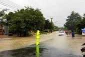 Bão số 12 vào Gia Lai làm nhiều cây bật gốc, mưa to