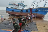 Cảng vụ Quy Nhơn thông tin lý do nhiều tàu bị chìm