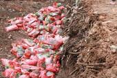 Tiêu hủy gần 200 tấn phân hết date trong kho ở Đắk Lắk