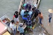 Dân làng bè Long Sơn vẫn chưa rời khu vực để tránh bão số 9
