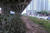 Hà Nội đề xuất đỗ xe gầm cầu, xén dải phân cách