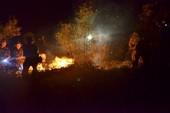 Công an điều tra vụ cháy lịch sử ở rừng Sóc Sơn