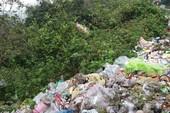 Di tích Hải Vân Quan nhếch nhác, tràn lan rác thải