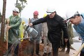 Trồng rừng bảo vệ môi trường thủy điện mới đạt 13%
