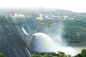 Làm thủy điện không trồng lại rừng, có thể xử lý hình sự