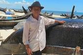 Lấy mẫu cá biển miền Trung kiểm nghiệm độ an toàn