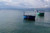 Lớp chất thải dày 3 m sẽ phủ 30 ha đáy biển Tuy Phong?